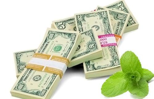 Мята для привлечения денег
